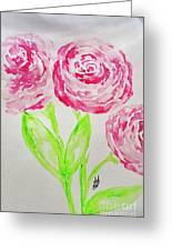 Peonies In Bloom Greeting Card