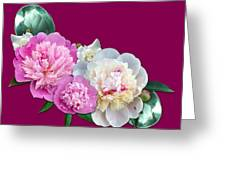 Peonies In Pink And Blue Greeting Card