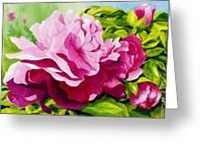 Peonies In Pink Greeting Card by Janis Grau