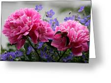 Peony an omen of a happy marriage greeting card for sale by peony an omen of a happy marriage greeting card m4hsunfo