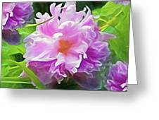 Peony Cluster 7 Greeting Card