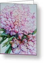 Peony Pink Parfait  Greeting Card