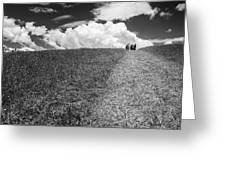 People On The Hill Bw Greeting Card