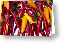 Peppers - Farmers Market - Madison - Wisconsin Greeting Card