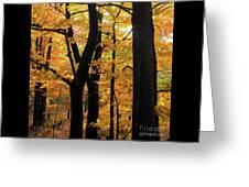 Pequaming Fall Greeting Card
