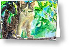 Perched Cat Greeting Card