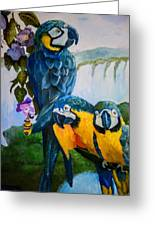 Perched In Paradise Greeting Card