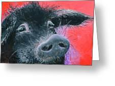 Percival The Black Pig Greeting Card
