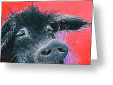 Percival The Black Pig Greeting Card