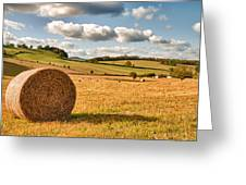 Perfect Harvest Landscape Greeting Card