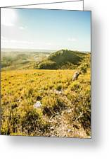 Picture Perfect Pastures Greeting Card