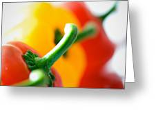 Perfect Peppers Greeting Card
