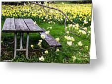 Perfect Place To Picnic Greeting Card