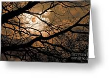 Perigee Moon In The Trees Greeting Card