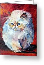 Persian Fluffy Cat Greeting Card