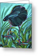 Persistent Fish Betta  Greeting Card