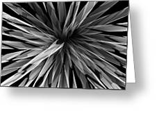 Perspective Facets Greeting Card