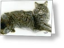 Pet Portrait - Buddy Greeting Card