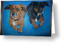 Pet Portrait Original Oil Painting On Canvas By Pigatopia Greeting Card