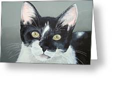 Pet Portrait Painting Commission Tuxedo Cat  Greeting Card