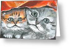 Pet Portraits-two Kitties Greeting Card
