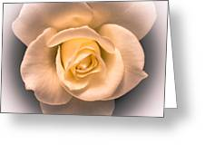 Petal Pleasure Greeting Card