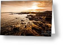 Petal Point Ocean Sunrise Greeting Card