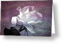 Petals And Drops Greeting Card