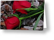 Petals And Leafs Greeting Card