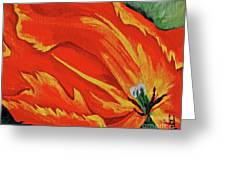Petals Of Fire Four Greeting Card