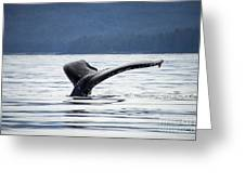 Petersburg Ak Whale Tale 5 Greeting Card