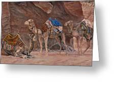 Petra Camels Greeting Card