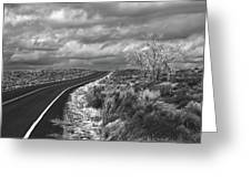 Petrified Forest 6 Greeting Card