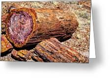 Petrified Log Greeting Card