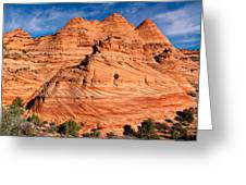 Petrified Sand Dunes Greeting Card
