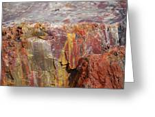 Petrified Wood 2 Greeting Card