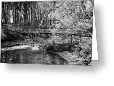 Petrifying Springs Park Bridge  Greeting Card