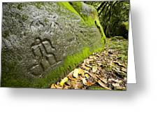 Petroglyphs At An Archaeological Site Greeting Card