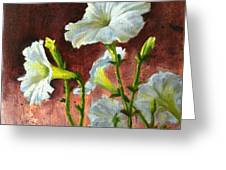 Petunias Delight Greeting Card