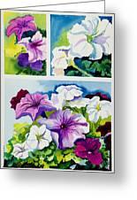 Petunias In Summer Greeting Card