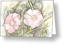 Petunias Greeting Card