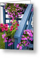 Petunias On Blue Porch Greeting Card