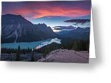 Peyto Lake At Dusk Greeting Card