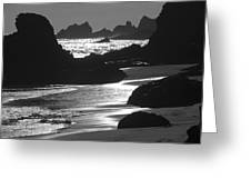 Pfeiffer Beach Sp 8192 Greeting Card