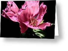 Pflower Pfunn Greeting Card