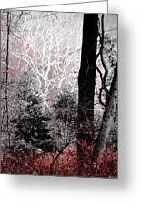 Phantasm In Wildwood Greeting Card