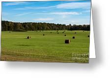 Pharr Mounds - Natchez Trace Greeting Card