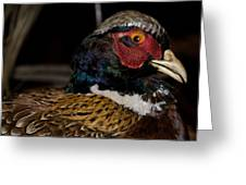 Pheasant In The Eye Greeting Card