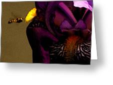 Pheromone Greeting Card