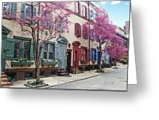 Philadelphia Blossoming In The Spring Greeting Card